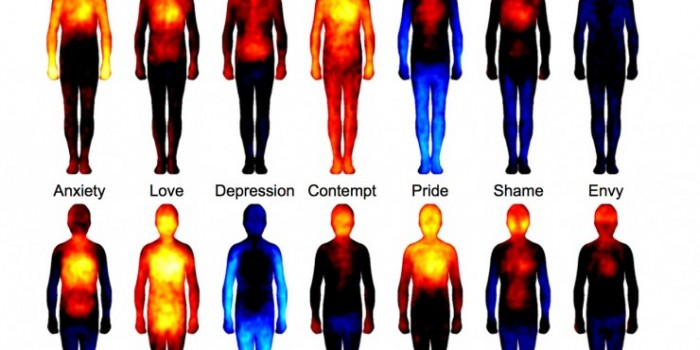 Exploring the Body Language of our Emotions